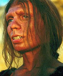 220px-Reconstruction_of_Neanderthal_woman.jpg