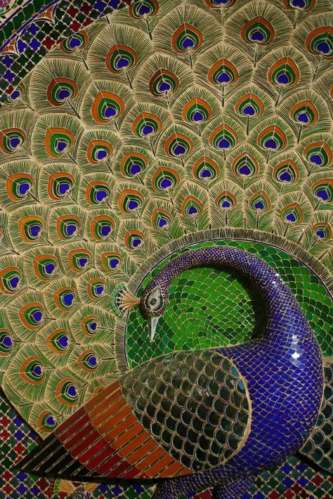 49472d44fe9e65bdef87e1da333eaf25--udaipur-mor Rajastan.jpg