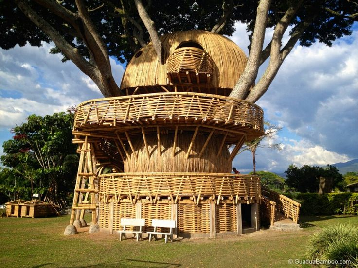 54b86076f34ff28570551625014662dc--tree-houses-dreams Guadua bamboo treehouse by Colombian Arch...jpg