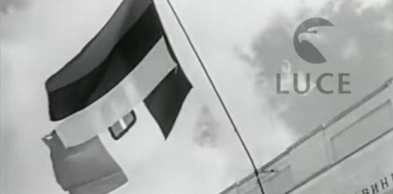 5e30a5ad-e314-43c8-b90e-43300a0a0a64-zastava-previewOrg[1].jpg