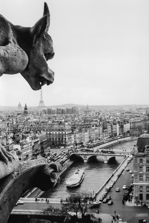 a66f39c46575439af852a0c35f69e7e3notre dame de paris robert doisneau.png