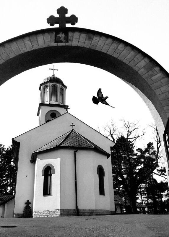 crkva i golub.jpg