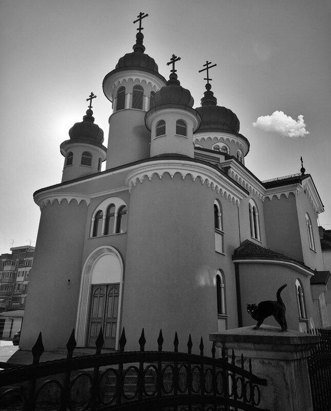 crkva i macka bnw.jpg