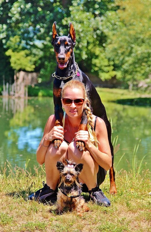 doberman_pinscher_yorkshire_terrier_woman_pets_dogs_1.jpg