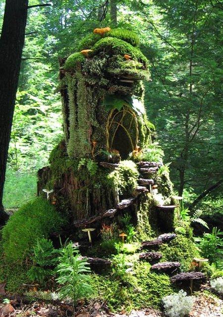 Forest moss house.jpg
