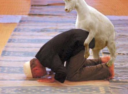 Islam goat sex.png