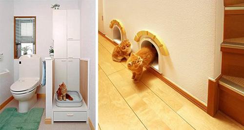 japancathouse2Japanese Cat-friendly House Design.jpg