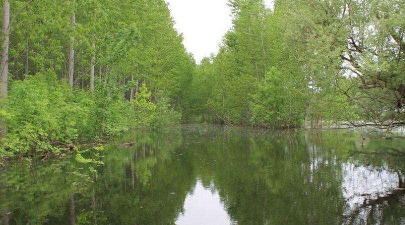 jezero-tikvara.jpg
