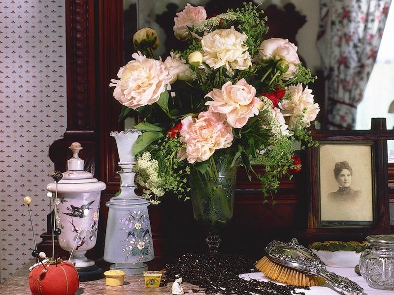 peonies_flowers_bouquet_vase_frame_comb_rarity_antiquity_32153_800x600.jpg