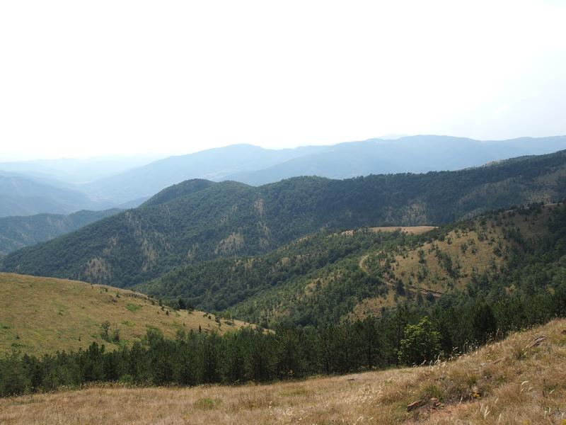 planina.JPG