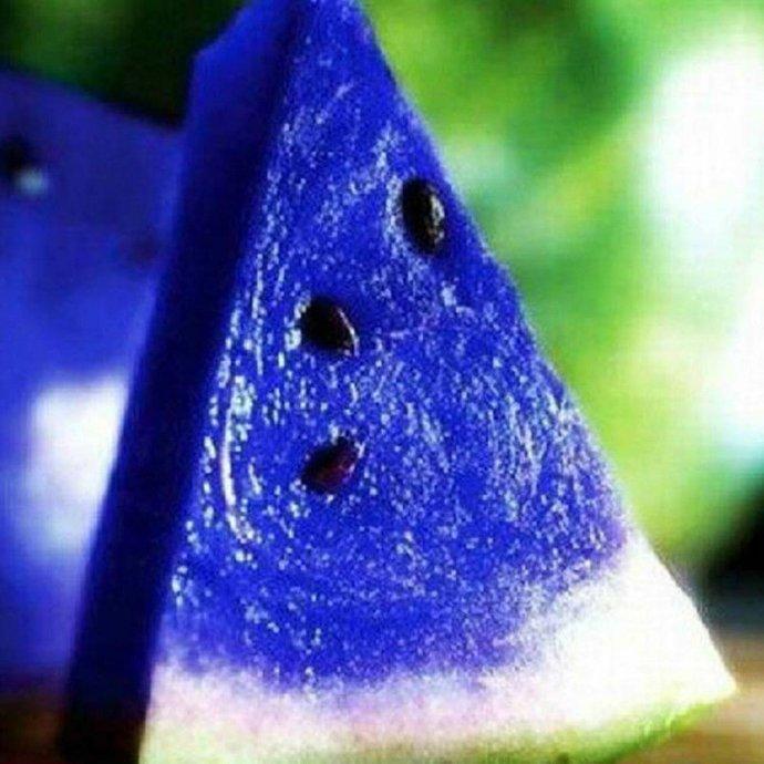sjeme-plave-lubenice-slika-93235988.jpg