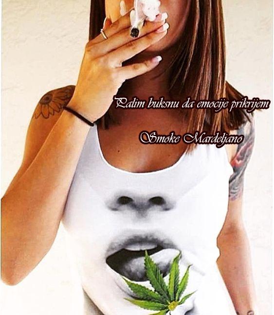 Smoke Mardeljano buksna.jpg