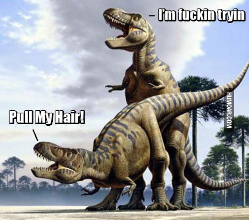 t-rex-pull-my-hair.jpg