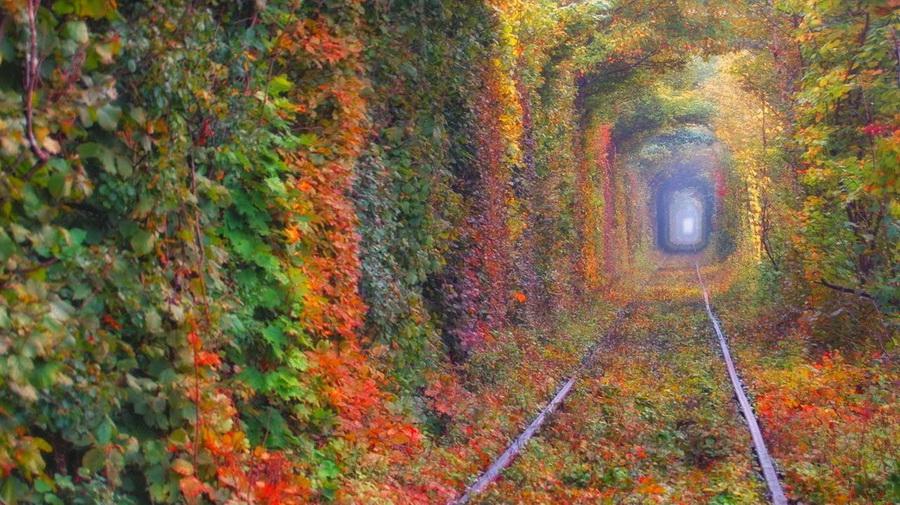 tunel_01.jpg