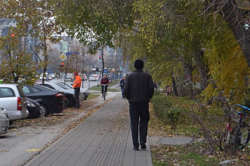 улица јесен.jpg