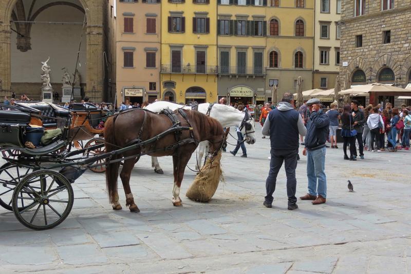 ulicai konji.jpg