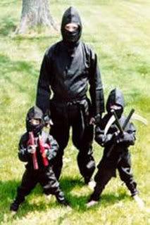 ninja06iw2-1.jpg