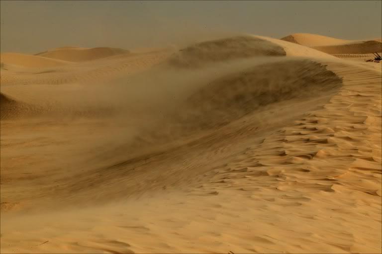 sandstorm-sahara-desert-2.jpg