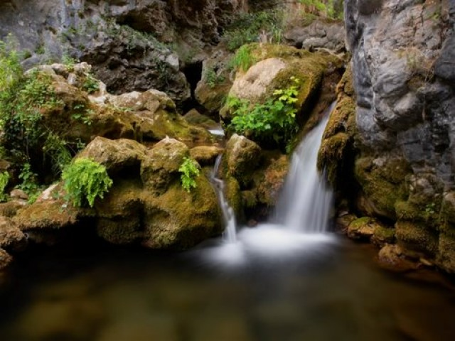 Vodopadi - Page 7 0001474291m02upzzw-1